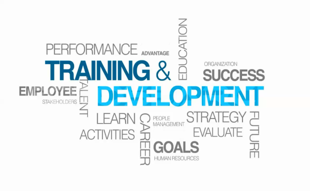 the role of training and development Training and development describes the formal, ongoing efforts that are made within organizations to improve the performance and self-fulfillment of their employees through a variety of .